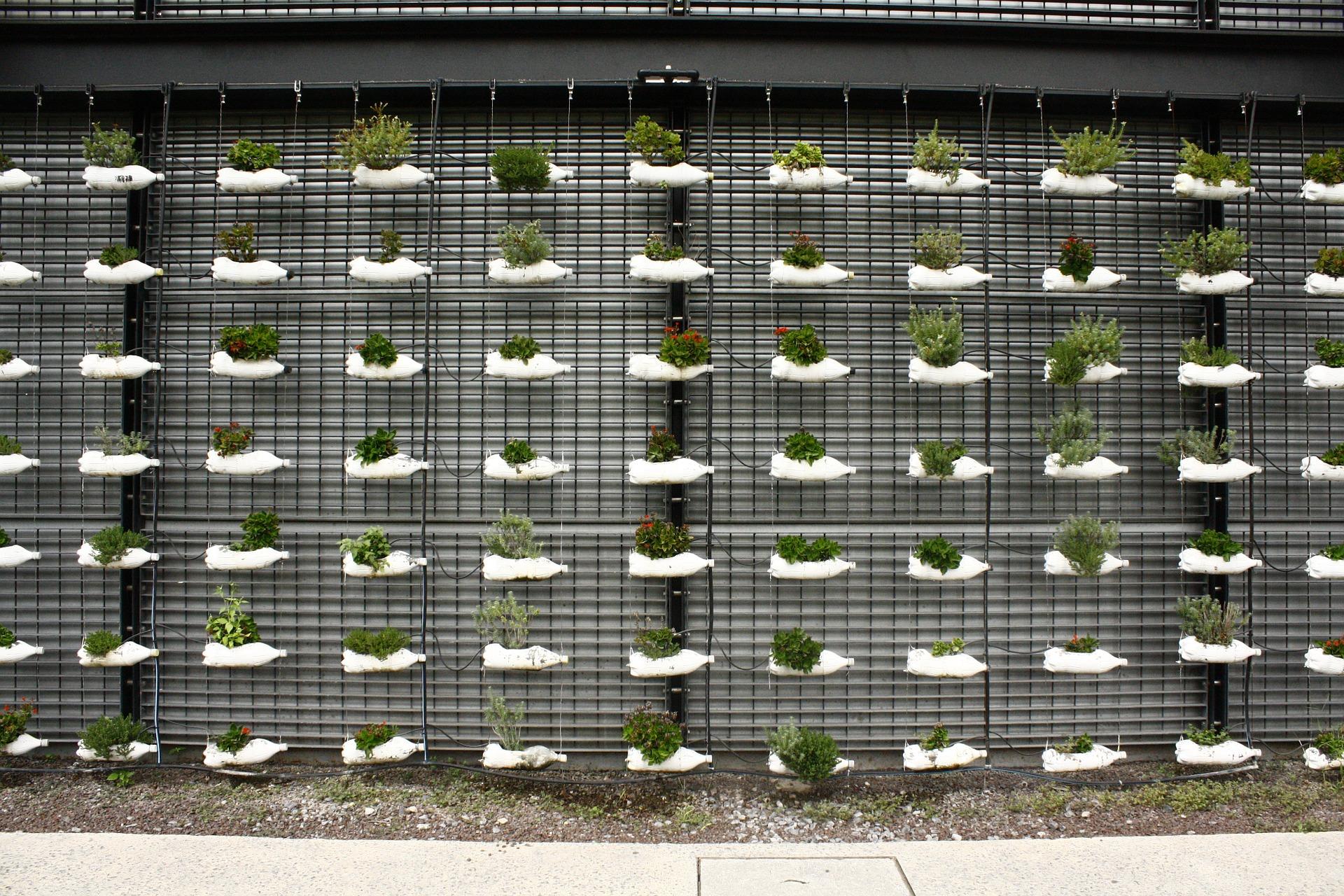 anbauen auf dem balkon ein selbst versuch in urban gardening greenline reisewelten. Black Bedroom Furniture Sets. Home Design Ideas